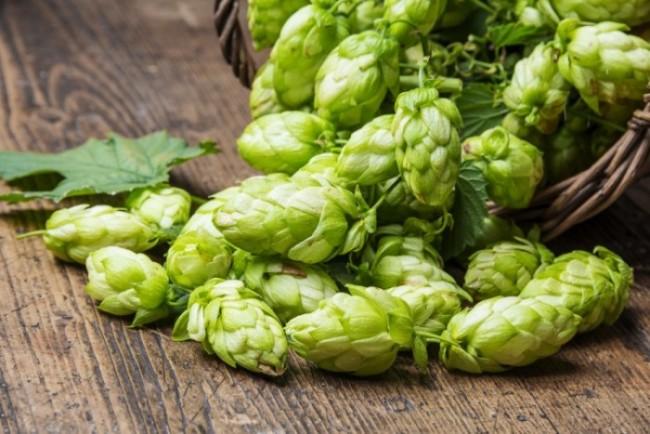 Une définition juridique de la désignation « bière » en France