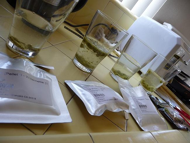Comment tester le goût des houblons, goûter le houblon ?