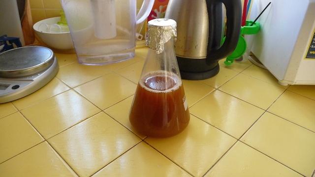 Cultiver et démarrer ses levures, le yeast starter !
