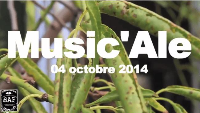 De la musique et de la bière pour les Music'Ale à Montpellier
