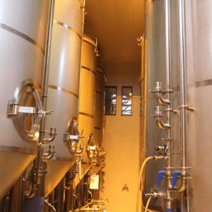 Salle de fermentation 1