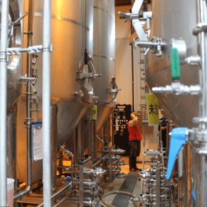 Salle de fermentation 2
