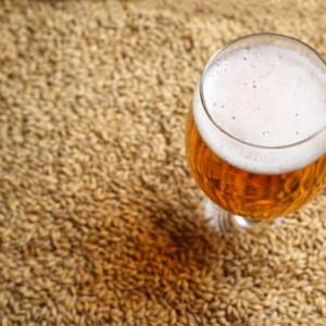 malt-biere