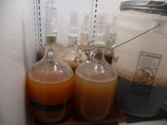 hydromel-fermentation