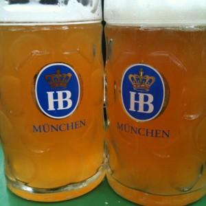 Hofbrau-mass-bier