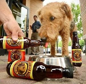 Bower Beer, une bière pour les chiens à $16.22