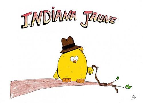 Indiana Jaune