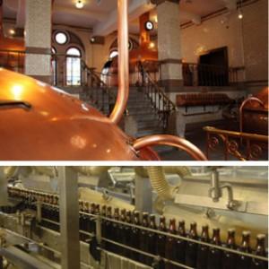 39 styles de bières de fermentation basse passés au crible