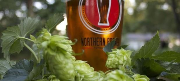 65 types de bières de fermentation haute en détails