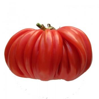 Recette de la tarte la tomate moutarde - Cuisiner le coeur de boeuf ...