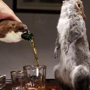 Top 20 des bières insolites et bizarres