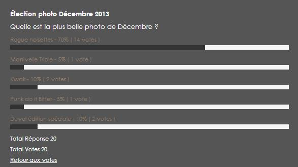 Bilan élection photo de Décembre 2013