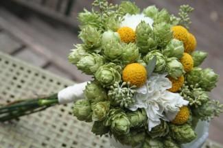 houblon-bouquet