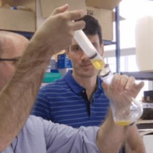 L'ADN de vos bières bientôt décodé !