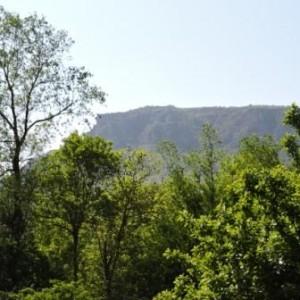 Les Brasseurs de la Jonte - paysage Causse Méjean