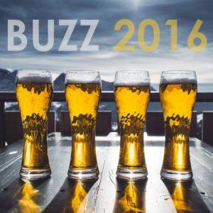 Top 10 des buzz bière en 2016